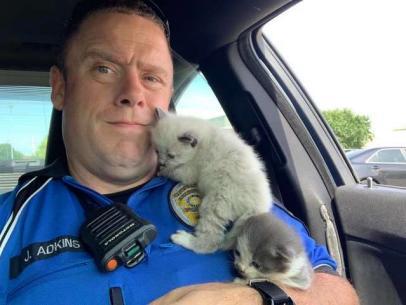 Texas Police Officers Rescue Kittens Stuck Inside Car Bumper | Good